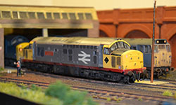 Class 37 on Jakes Yard Shed